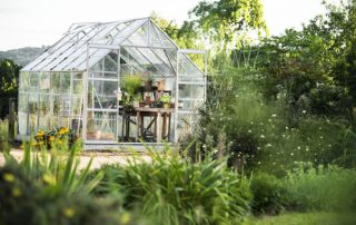 Garden therapy : qu'est-ce que c'est et quels sont les avantages ?